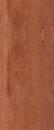 Kolor nóg Ciemna olcha-004